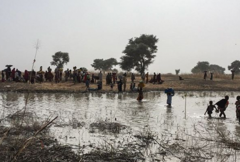 Bodo , Cameroon - People fleeing Rann
